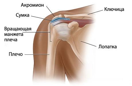 Симптомы и лечение при переломе плеча у пожилых людей